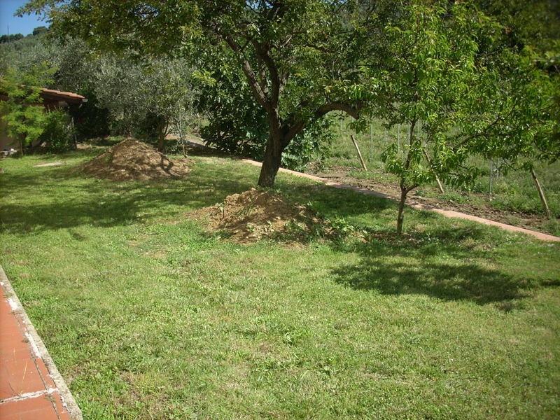 Villa singola POGGIO A CAIANO V905D