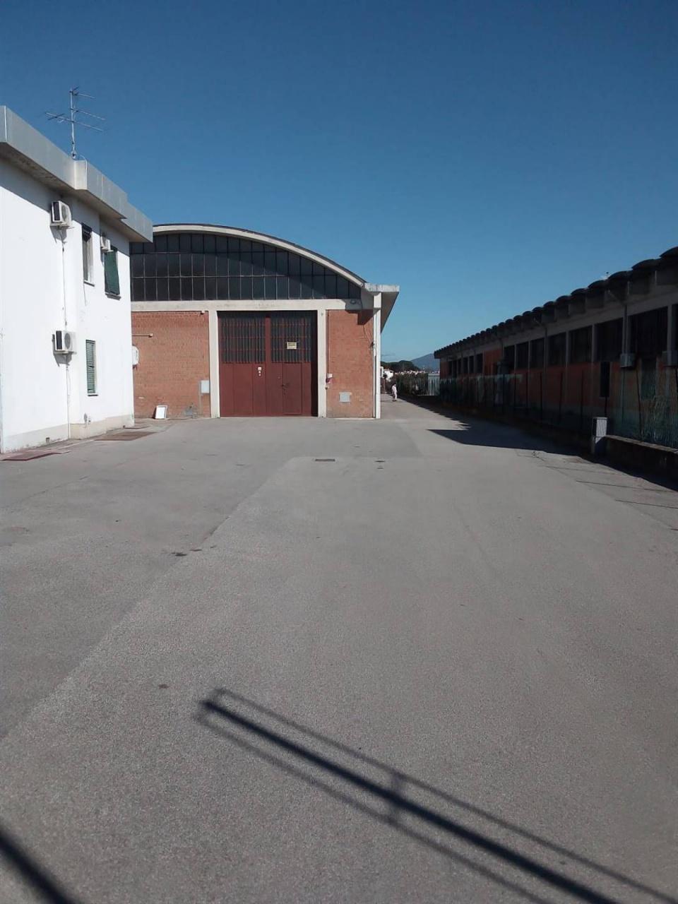 Capannone Industriale CAMPI BISENZIO F273