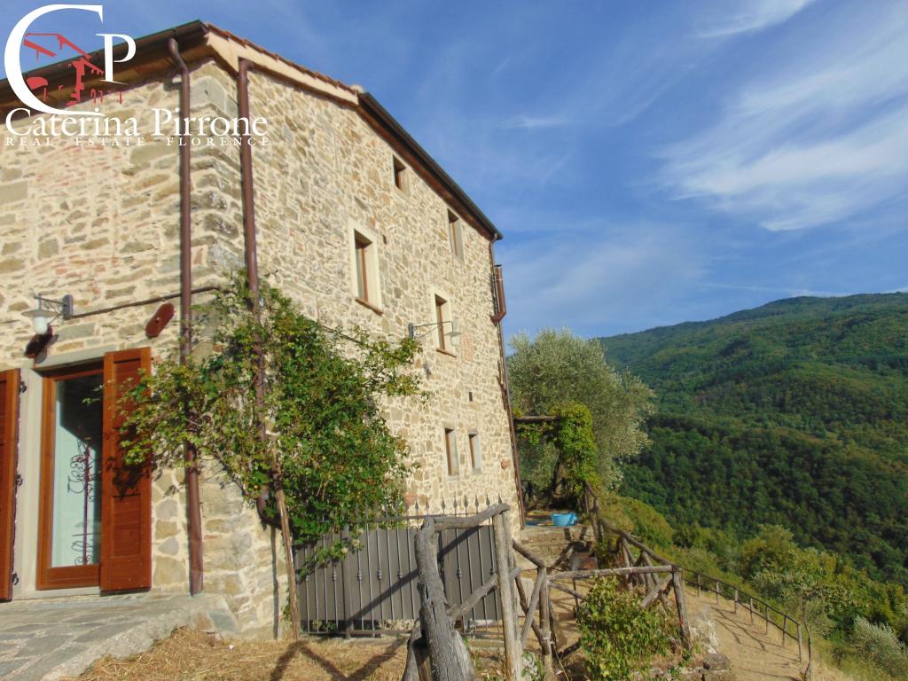 Rustico / Casale in Vendita a San Godenzo