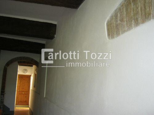 Bilocale Grosseto Corso Carducci 5