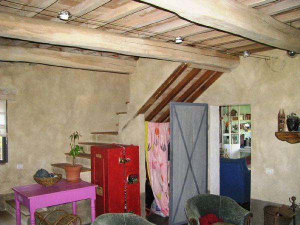 Nel Comune di Scansano, in Località Polveraia, nelle bellissime colline della Maremma Toscana, vendiamo podere di 6 ha di terreno con 400 piante di ulivo in piena produzione, bosco e casa colonica completamente ristrutturata.