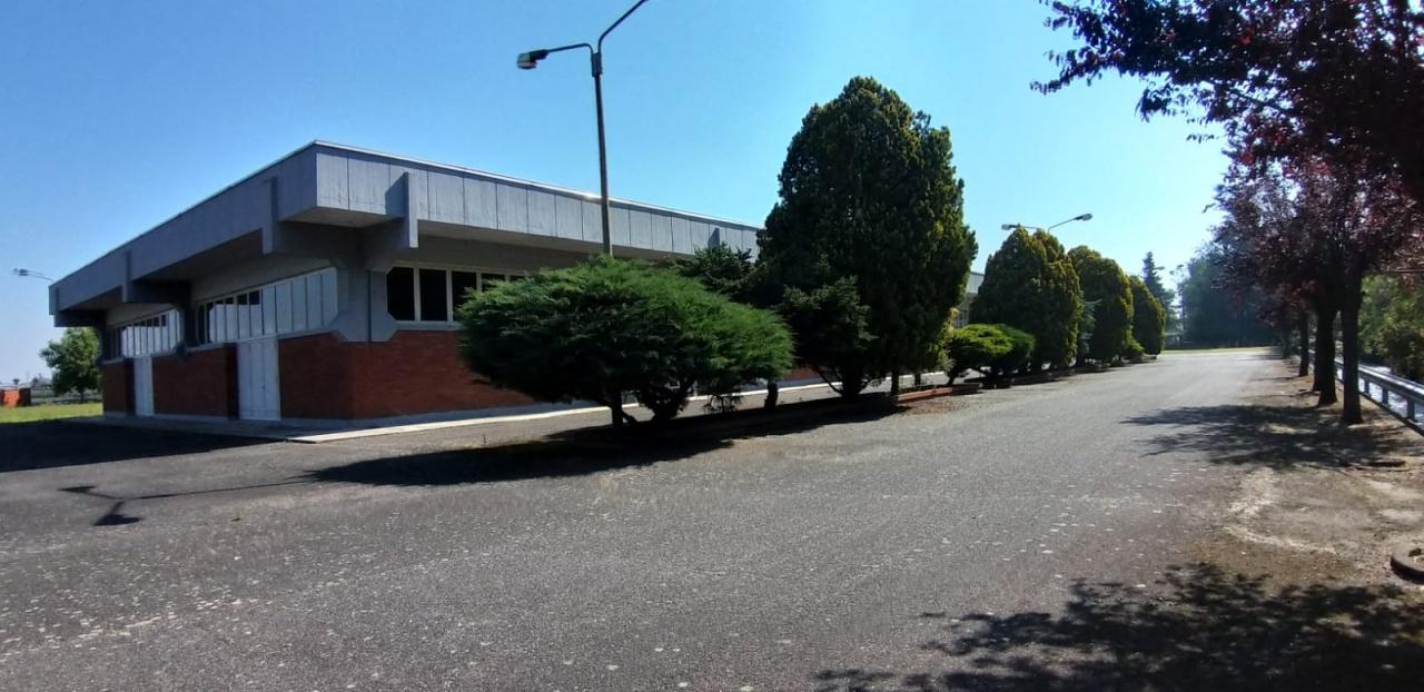 Locale Commerciale CRESCENTINO 2343