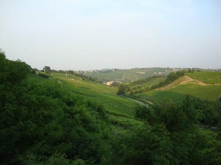 Terreno Edificabile Comm.le/Ind.le in vendita a Zenevredo, 9999 locali, prezzo € 345.000 | Cambio Casa.it