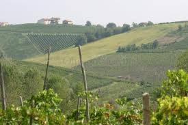 Terreno Edificabile Comm.le/Ind.le in vendita a Montù Beccaria, 9999 locali, zona Località: FRAZ. CASA BARBIERI, prezzo € 70.000 | Cambio Casa.it