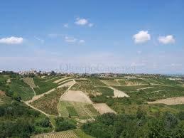 Terreno Agricolo in vendita a Montù Beccaria, 9999 locali, zona Località: FRAZ. CASA BARBIERI, prezzo € 43.000 | Cambio Casa.it