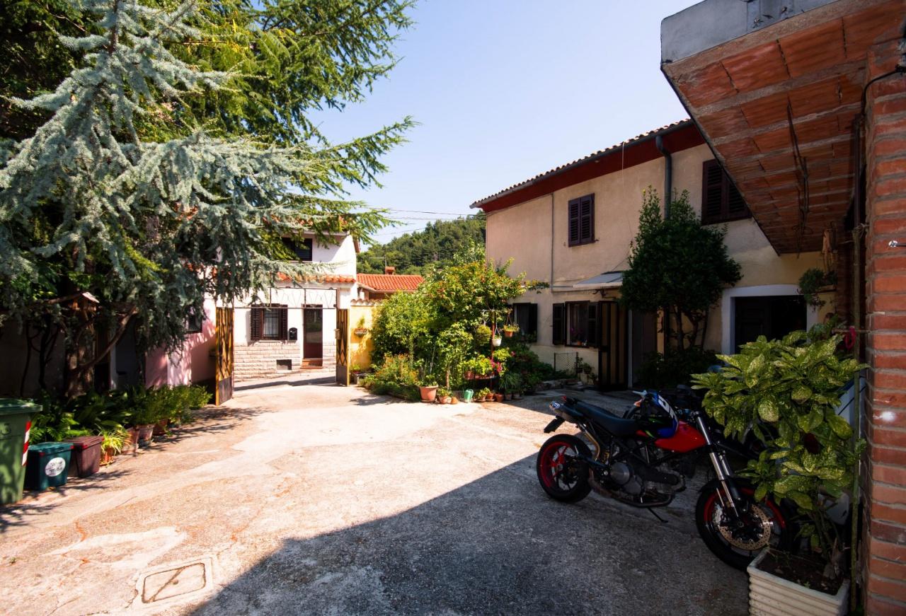 Soluzione Indipendente in vendita a San Dorligo della Valle, 6 locali, prezzo € 250.000 | CambioCasa.it