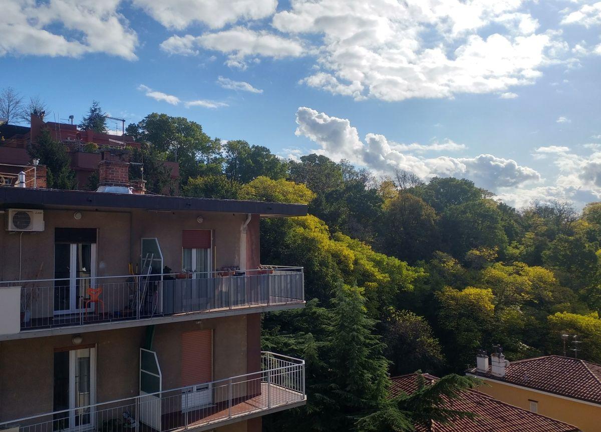 Appartamento in buone condizioni in affitto Rif. 11492436