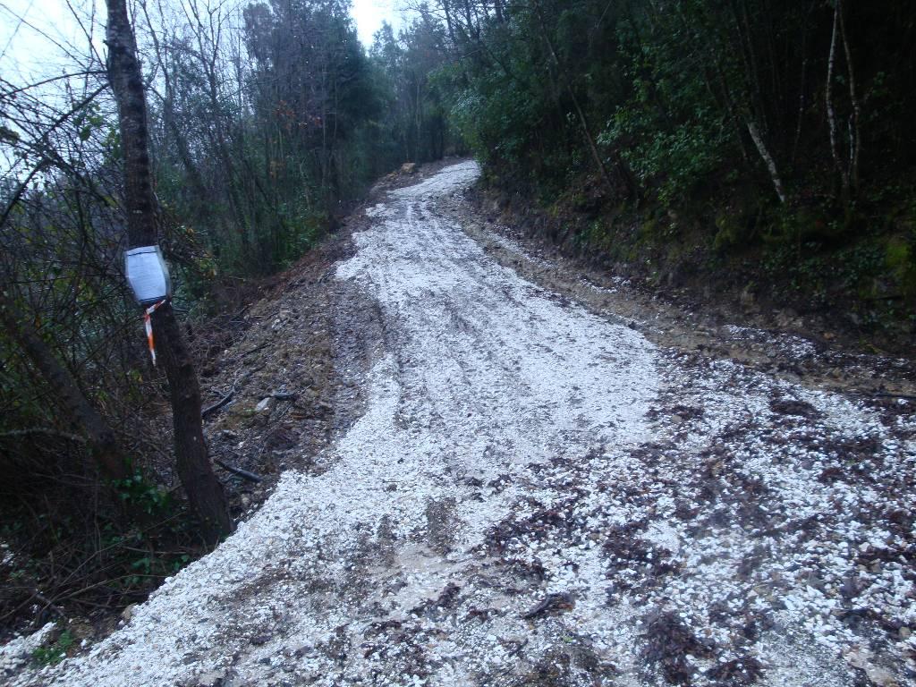 Bilocale Montecatini Val di Cecina  8