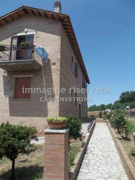 Bilocale Montalcino Via Del Colombaio 3