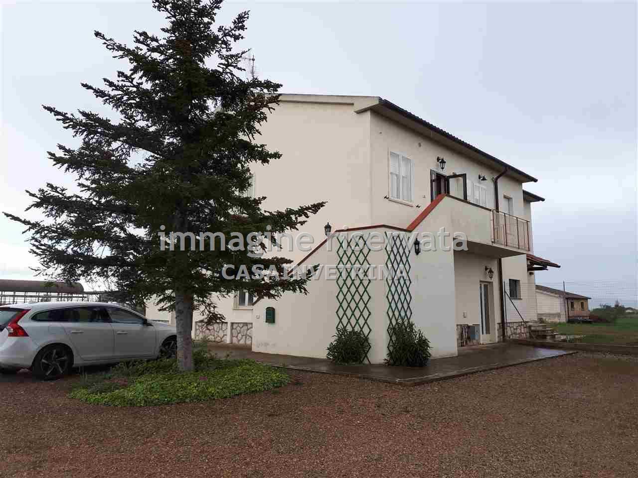 Appartamento in ottime condizioni arredato in affitto Rif. 10061610