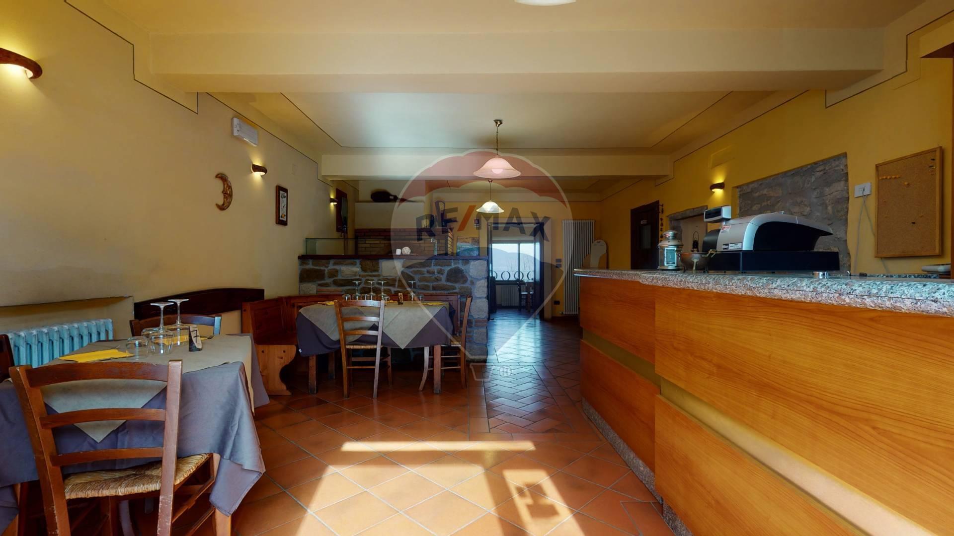 Ristorante / Pizzeria / Trattoria in affitto a Careggine, 23 locali, prezzo € 1.500 | CambioCasa.it