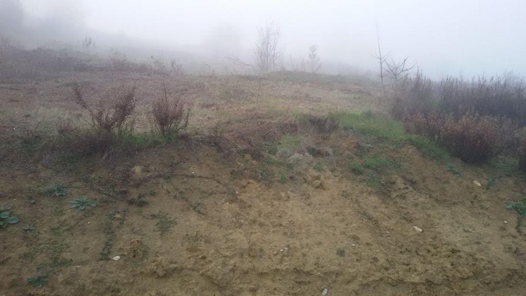 Terreno Agricolo in Vendita SASSOFELTRIO