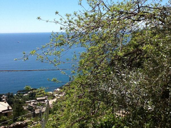 Soluzione Indipendente in vendita a Genova, 5 locali, prezzo € 350.000 | CambioCasa.it