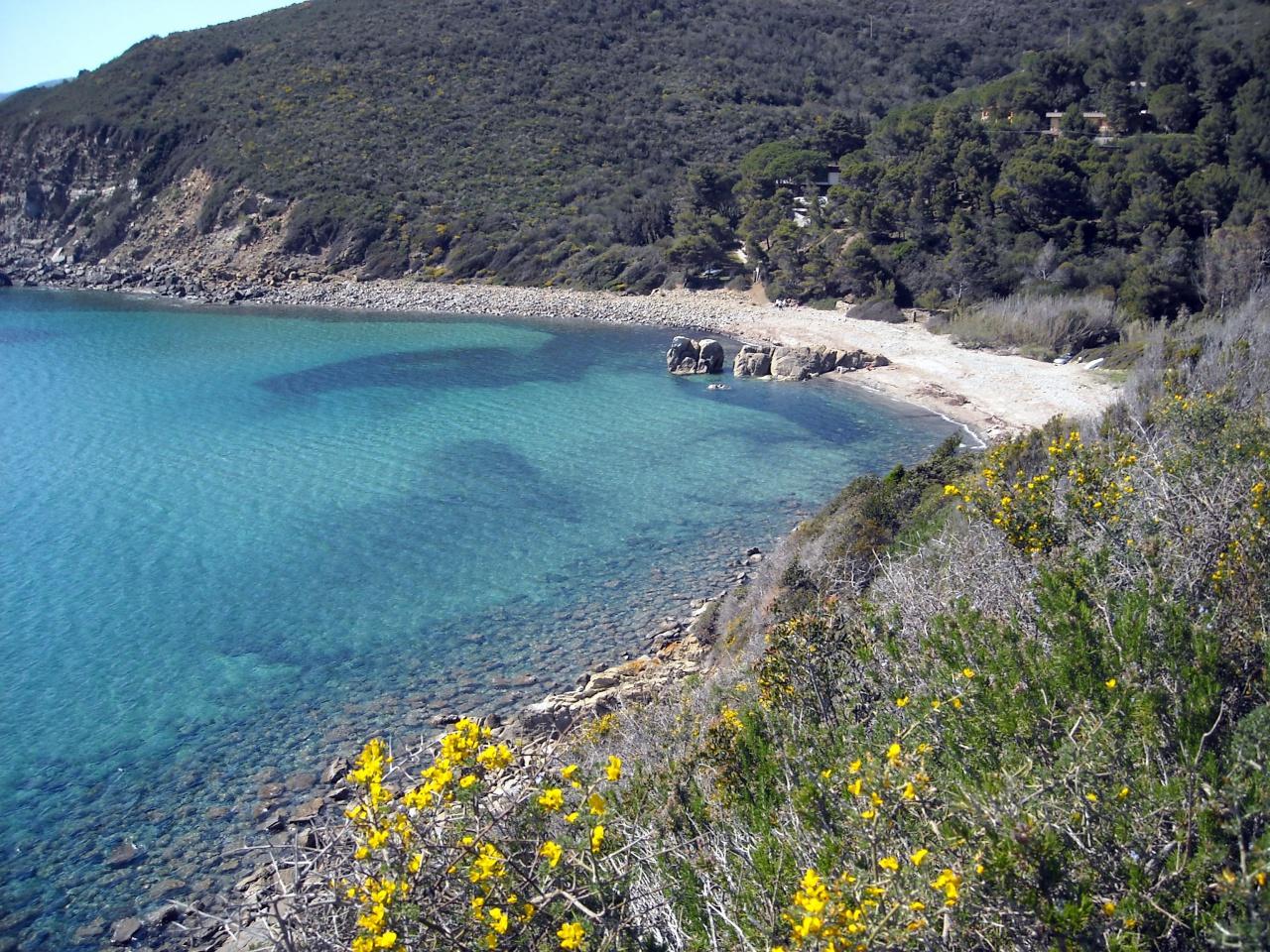 Bilocale Campo nell Elba Fonza 3