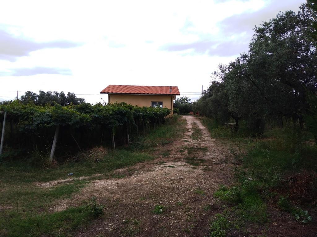 Villa in vendita a Ortona (CH)-34