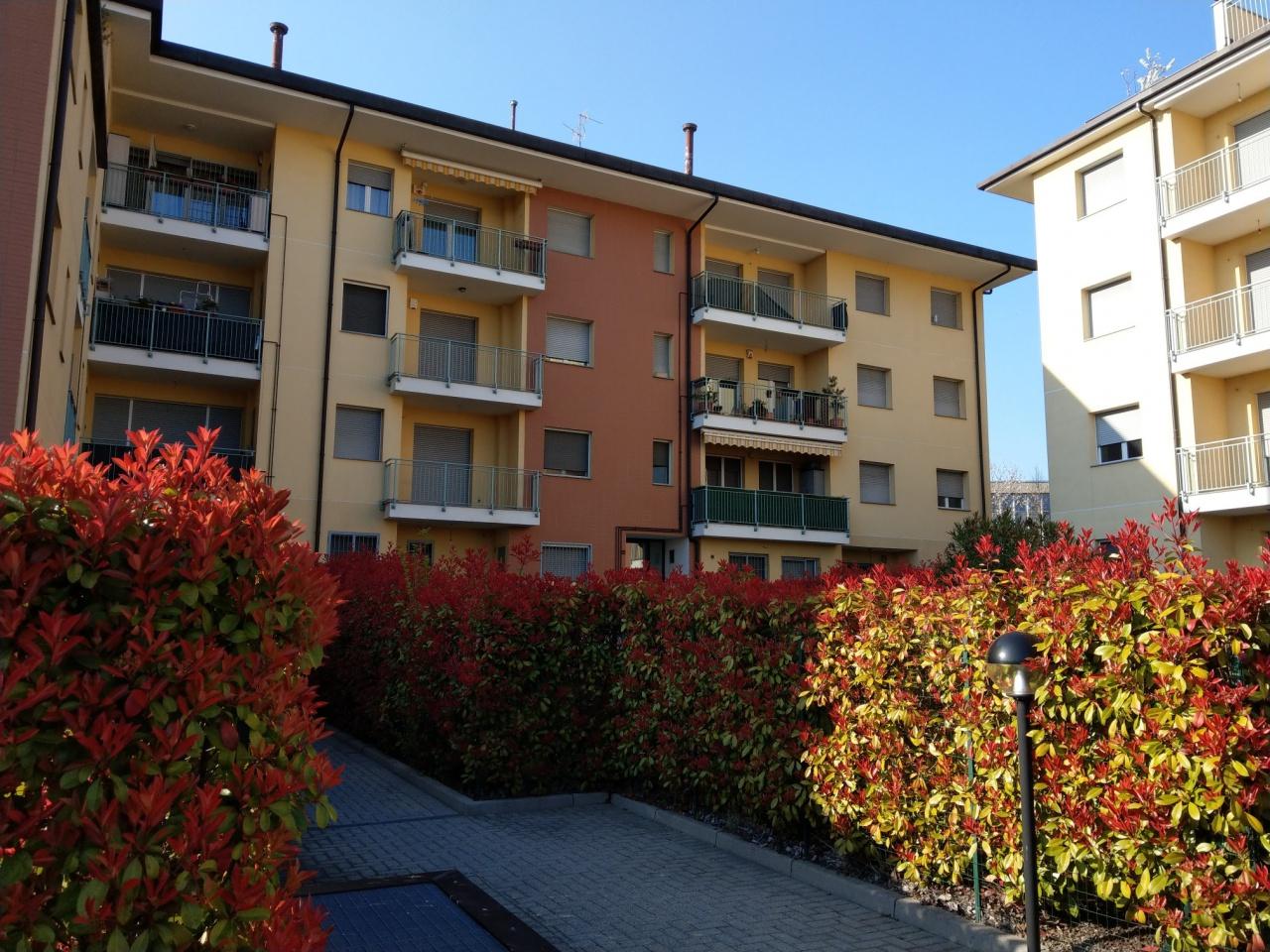Appartamento in ottime condizioni in vendita Rif. 9924178