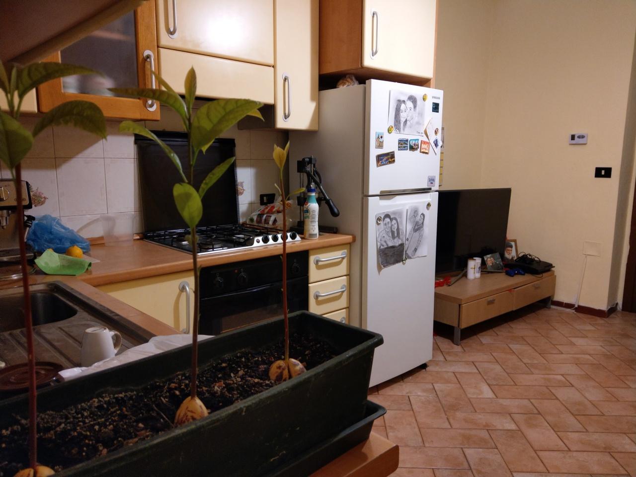 Appartamento in buone condizioni in vendita Rif. 12046360