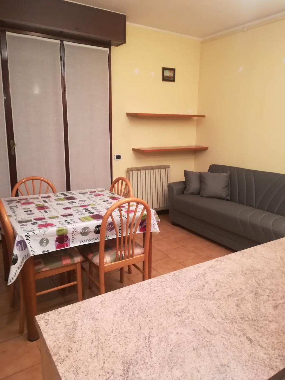 Appartamento in ottime condizioni arredato in affitto Rif. 12329946