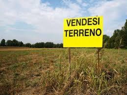 VENDESI TERRENO AGRICOLO IN COMUNE DI SANT'ANGELO DI PIOVE DI CIRCA 11 CAMPI AGRICOLI PADOVANI.<br /> PREZZO RISERVATO. CHIEDERE IN AGENZIA. Rif. 9893570