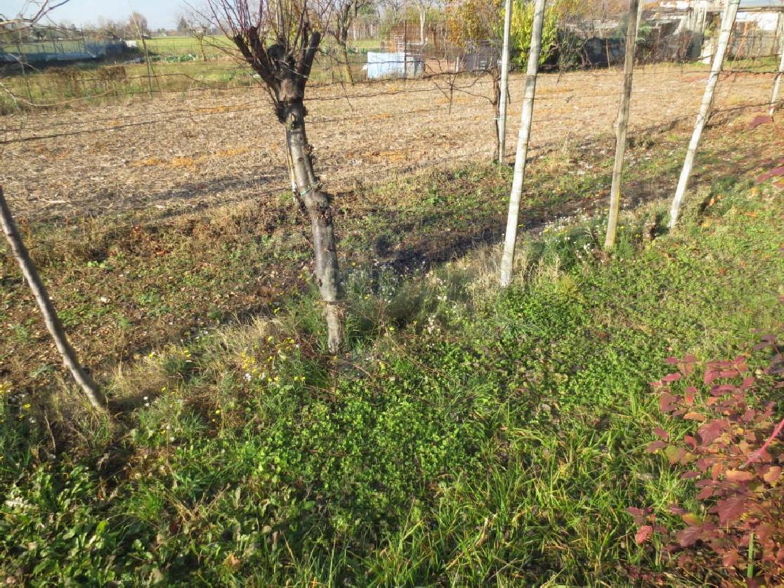 Terreno Edificabile Comm.le/Ind.le in vendita a Zanè, 9999 locali, prezzo € 135.000 | CambioCasa.it