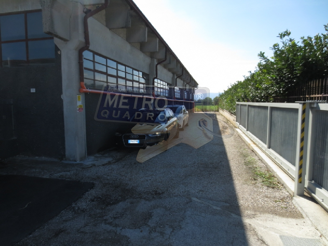 Capannone Industriale ZANE' C/487