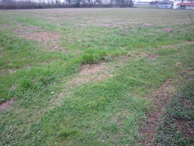 Terreno Agricolo in vendita a Altivole, 9999 locali, zona Zona: Caselle, prezzo € 100.000 | Cambio Casa.it