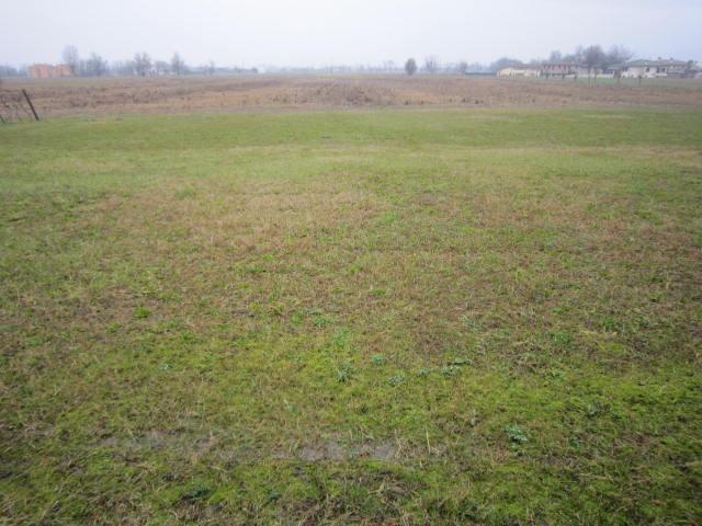 Terreno Agricolo in vendita a Fonte, 9999 locali, Trattative riservate | Cambio Casa.it