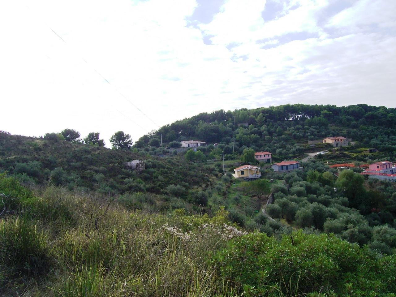 Terreno Agricolo in vendita a Imperia, 9999 locali, prezzo € 60.000 | PortaleAgenzieImmobiliari.it