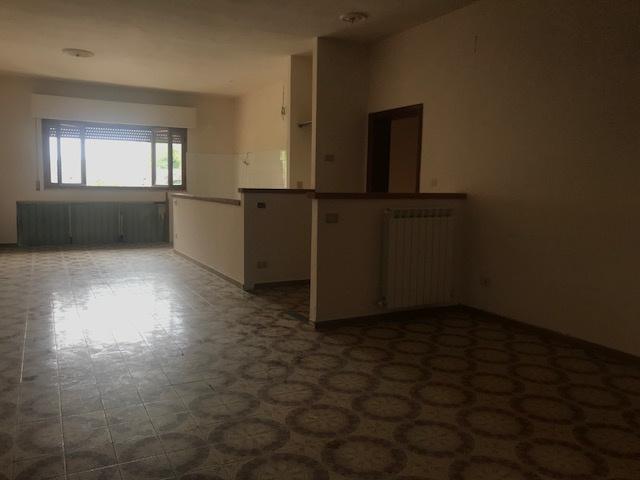 Appartamento in buone condizioni in affitto Rif. 7840201