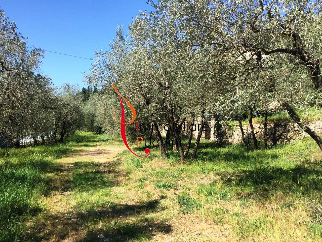 Villa in vendita a Calenzano, 8 locali, zona Località: GENERICA, prezzo € 590.000 | Cambio Casa.it