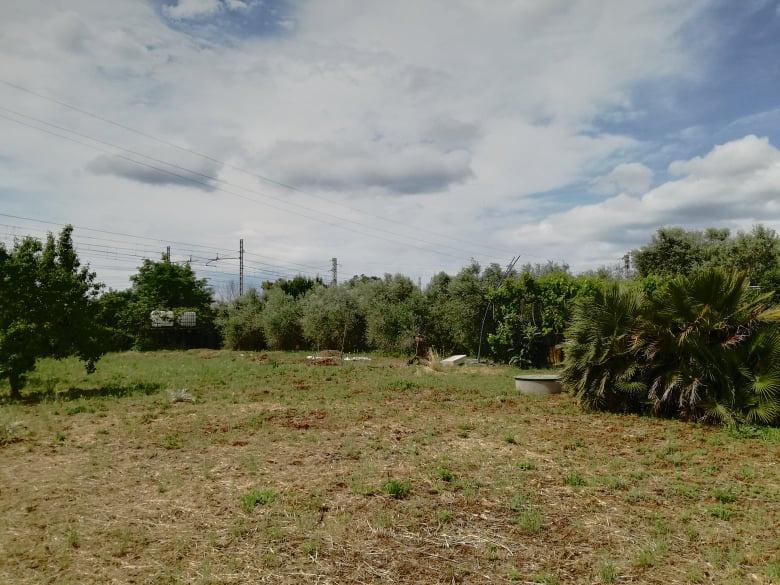 Terreno Agricolo in Vendita a Follonica