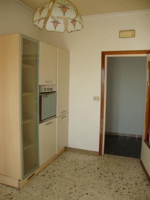 Bilocale Viareggio  5
