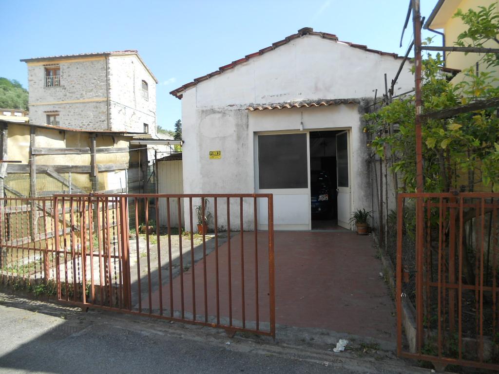 Terratetto MASSAROSA 60790