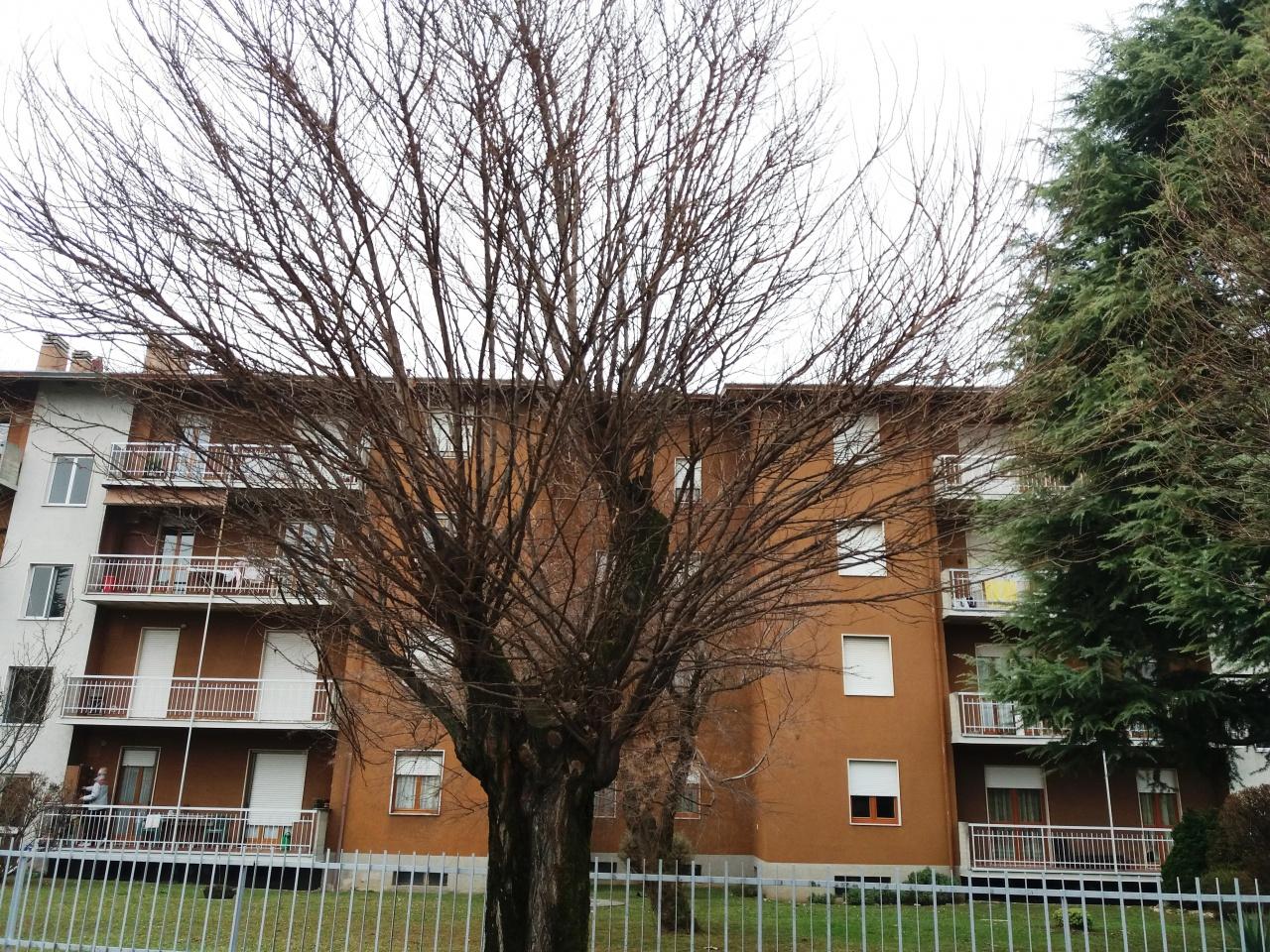 Appartamento in affitto a Seriate, 3 locali, prezzo € 450 | CambioCasa.it