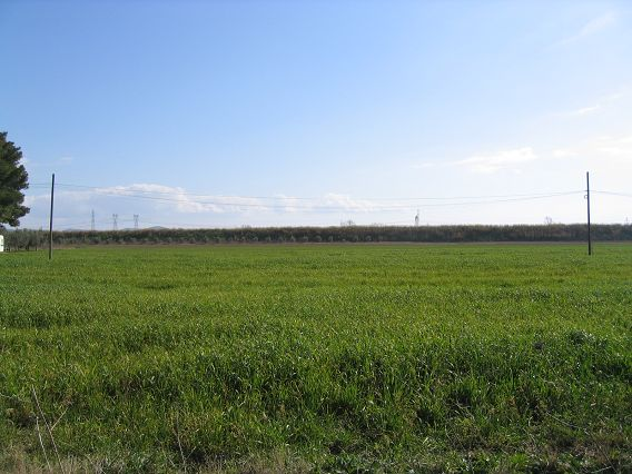 Terreno Commerciale in vendita Rif. 4761781