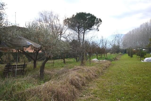 Villa in vendita a Lucca, 7 locali, zona Località: NAVE, prezzo € 228.000 | Cambio Casa.it
