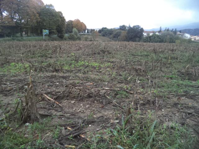 Terreno Agricolo in Vendita a Borgo San Lorenzo