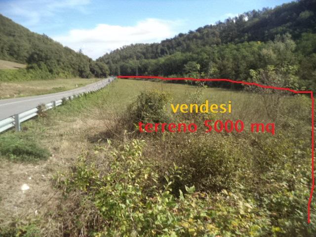 Terreno Agricolo in vendita a Vaglia, 9999 locali, prezzo € 50.000 | Cambio Casa.it