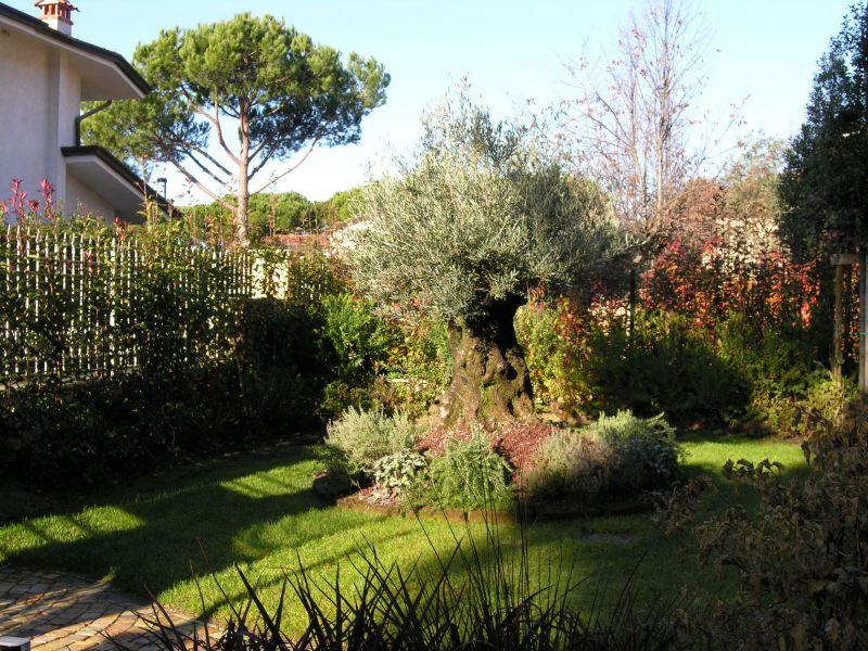 Villa bifamiliare FORTE DEI MARMI 1477