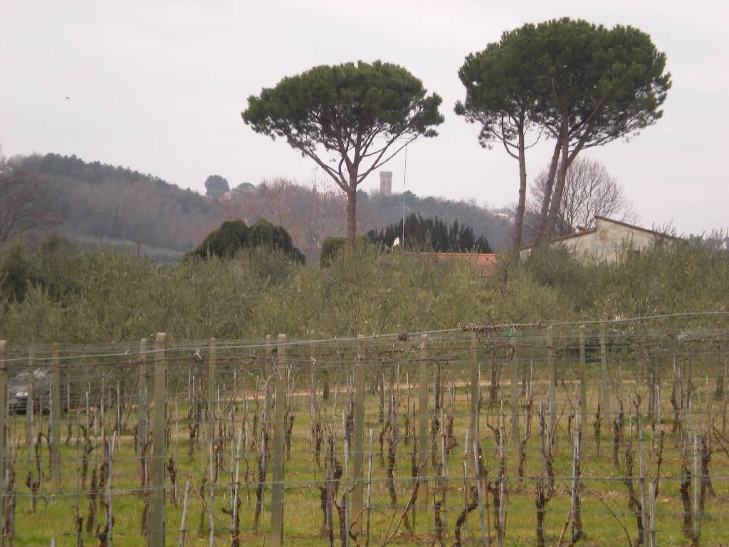 Rustico/Casale/Corte ALTOPASCIO 906