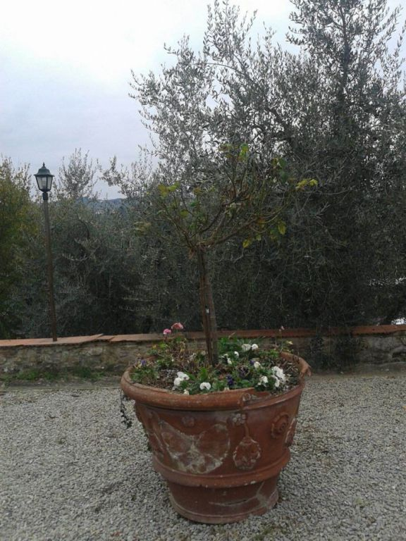 Bilocale Firenze  12
