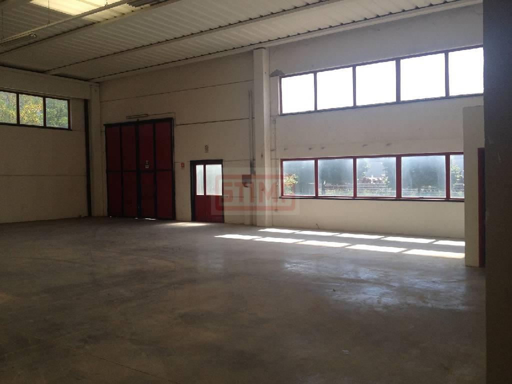 affitto capannone maserada sul piave   1300 euro  560 mq