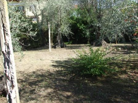 Terreno Agricolo in vendita a Massa, 9999 locali, prezzo € 120.000 | CambioCasa.it