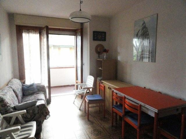 vendita appartamento massa ronchi  155000 euro  3 locali  55 mq