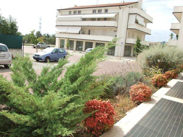 Negozio / Locale in affitto a Massa, 1 locali, prezzo € 600 | CambioCasa.it