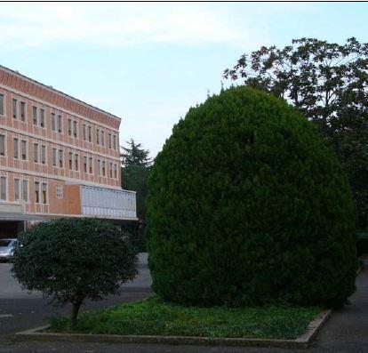 Stabile / Palazzo in buone condizioni in affitto Rif. 10588349