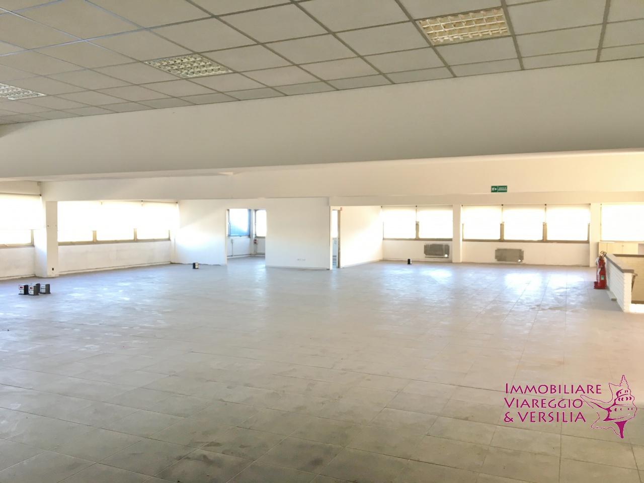 Capannone 5 locali in affitto a Massarosa (LU)