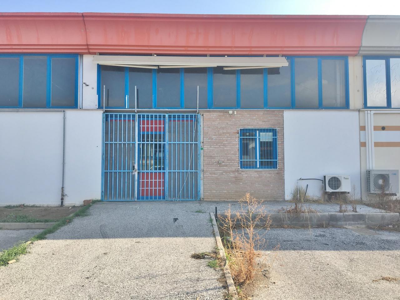 Capannone bilocale in affitto a Camaiore (LU)