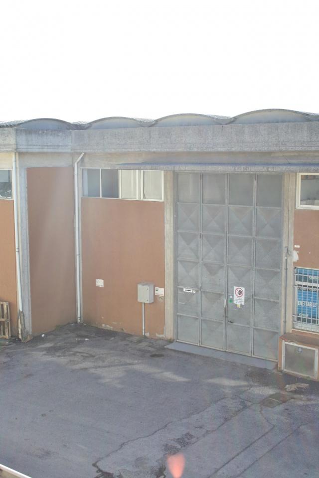 affitto capannone camaiore   1400 euro  5 locali  180 mq