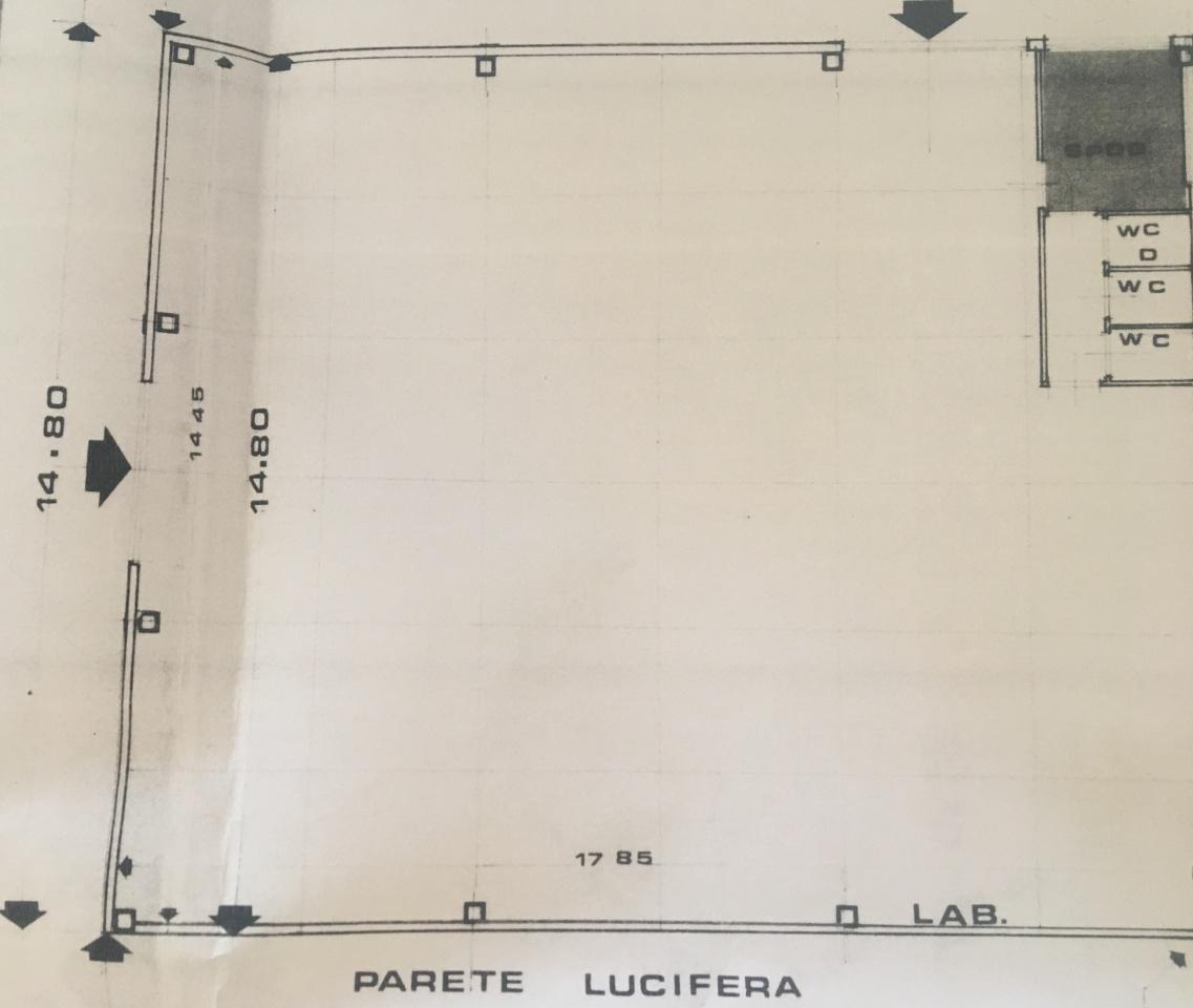 affitto capannone camaiore   1400 euro  1 locali  260 mq
